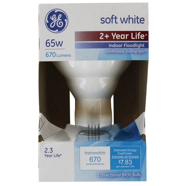 GE Lighting 26805 65W Soft White Indoor Floodlight
