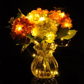 Copper Wire Light with 39 feet 240 Individual LEDs, 6V DC1000mA Power Adapter for DIY Decoration- Amber Champagne Gold