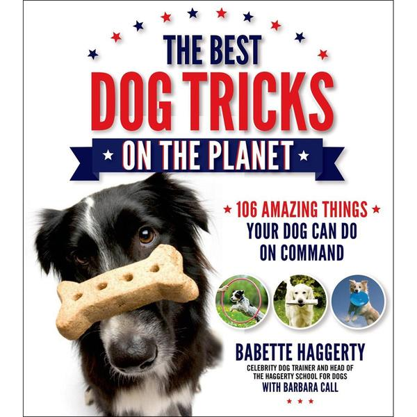 St. Martin's Books - The Best Dog Tricks On The Planet