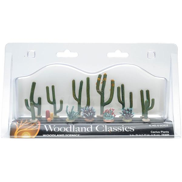 Cactus Plants .5 To 2.5 13/Pkg -