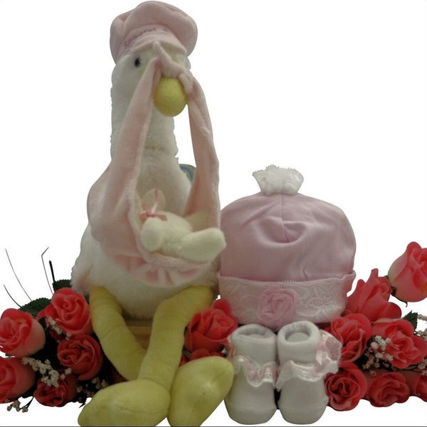 Great Arrivals Special Delivery Baby Girl Gift Set