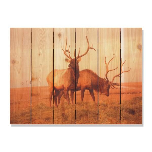 Bull Elk 33x24 Indoor/ Outdoor Full Color Cedar Wall Art 18105043