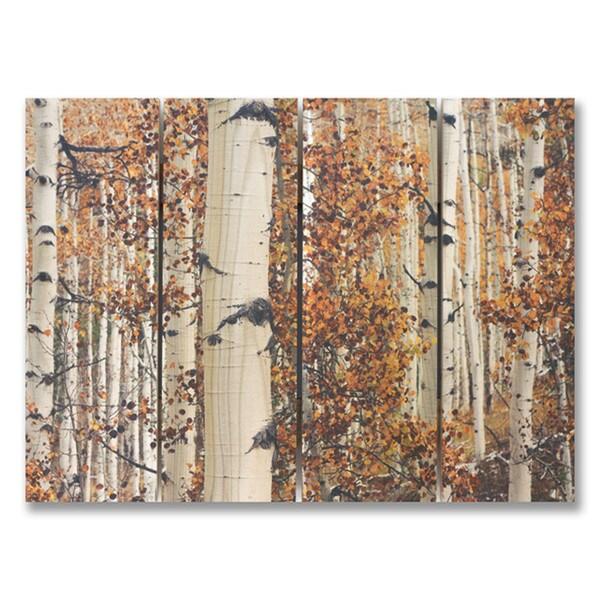 Fall Aspens 22x16 Indoor/Outdoor Full Color Cedar Wall Art