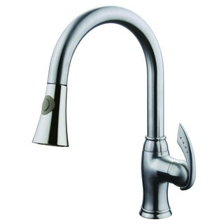 Robby Single Handle Pull Out Kitchen Faucet with 2 Function Spray Brushed Nickel Finish