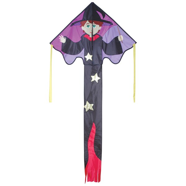 Large Ned Wizard Easy Flyer Kite