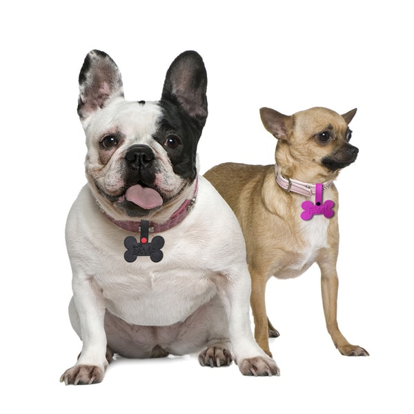 Bug Bam Mosquito, Flea & Tick Pet Tags