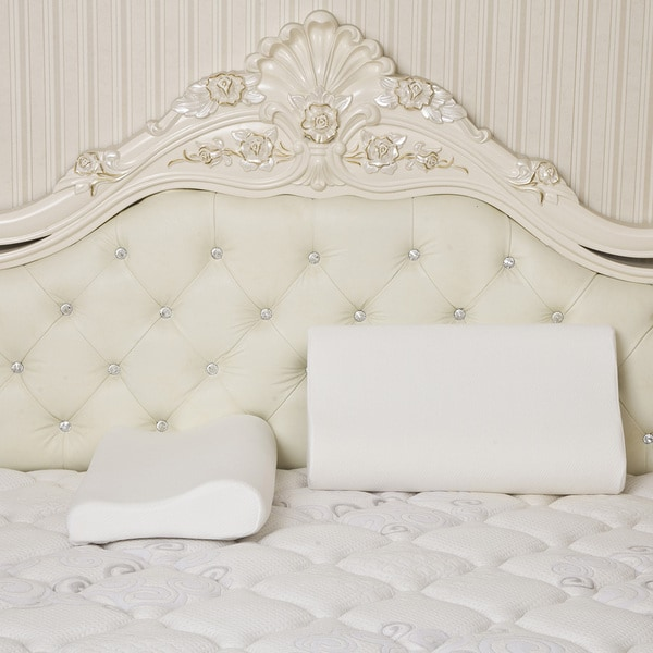Dasein Premium Contour Memory Foam Pillow with Cover (Set of 2)