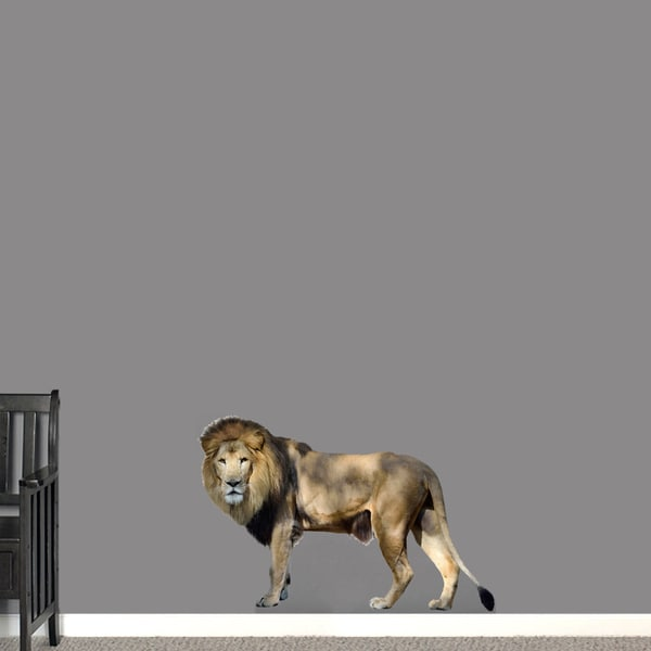 Printed Real Life Lion Wall Decal