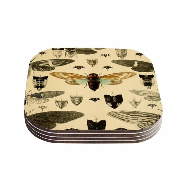 Suzanne Carter 'Vintage Cicada' Bugs Pattern Coasters (Set of 4)