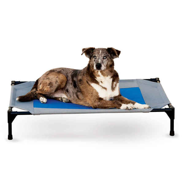 K&H Pet Products Coolin' Pet Cot & Dog Bed