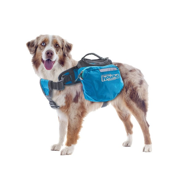 Outward Hound Large Backpack for Dogs