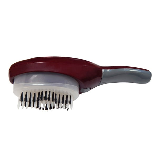 Art Fashions of Europe Automatic Hair Coloring Brush