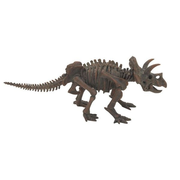 Attractive Ps Dinosaur Skeleton
