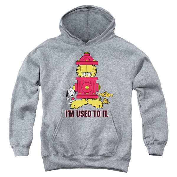 Youth Heather Garfield/I'M Used to It Pullover Hoodie