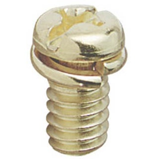 Westinghouse 7704800 Antique Brass Motor Screw Kit 10-count