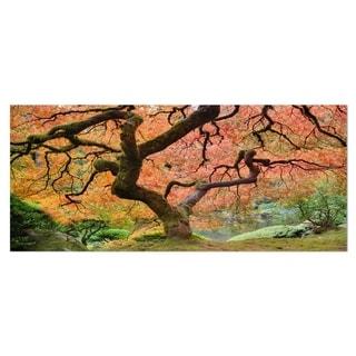 Designart 'Autumn Maple Tree' Landscape Photography Metal Wall Art