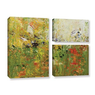 Allan Friedlander's 'Chester' 3 Piece Gallery Wrapped Canvas Flag Set