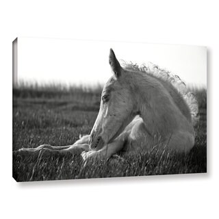 Andrew Lever's 'Relaxing Horse' Gallery Wrapped Canvas