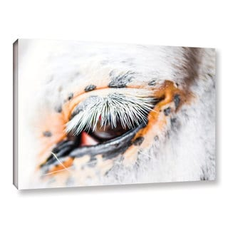 Andrew Lever's 'White Cat Lashes' Gallery Wrapped Canvas