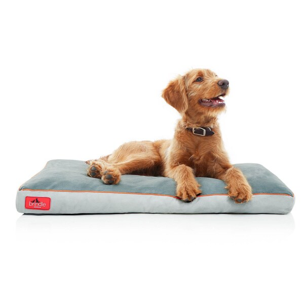 BRINDLE Memory Foam Dog Bed with Removable Washable Cover Size Medium in Khaki(As Is Item) 18758083