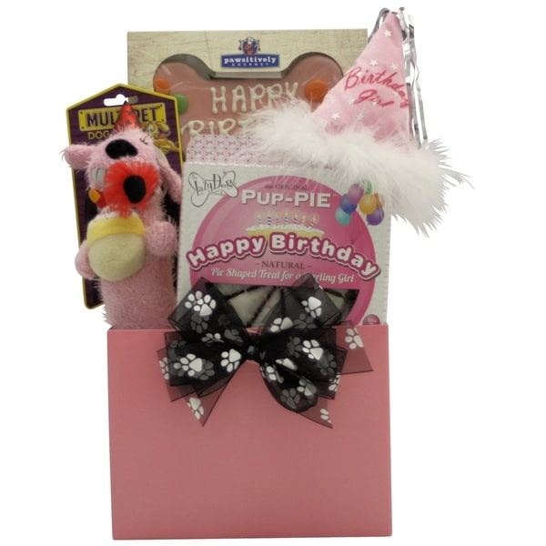 Happy Birthday Darling Girl! Dog Birthday Gift Basket
