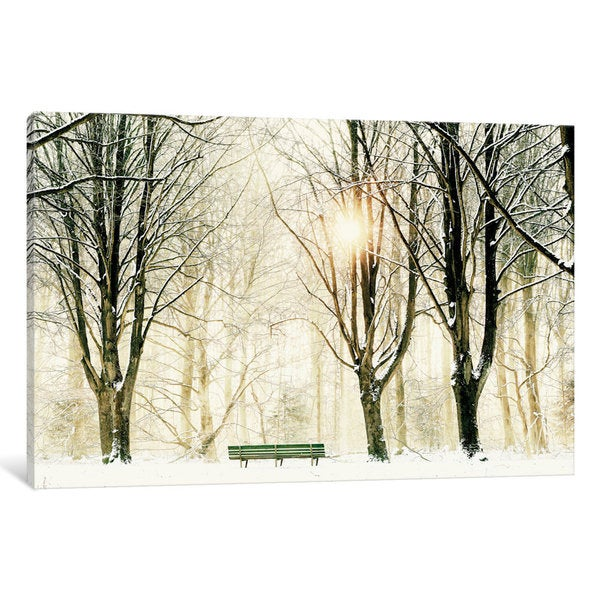 iCanvas Too Cold To Sit by Lars van de Goor Canvas Print