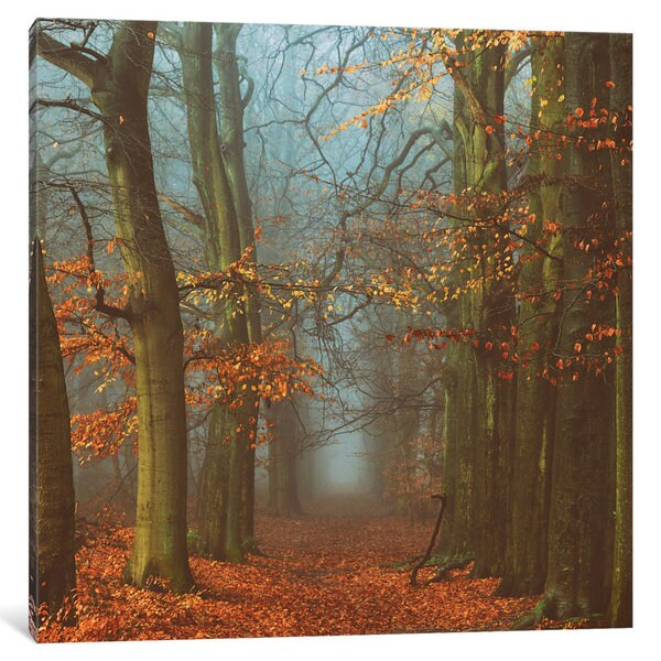 iCanvas Path Of The Mystics by Lars van de Goor Canvas Print
