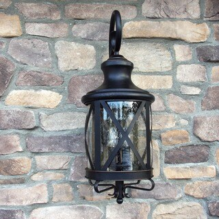 Taysom Oil Rubbed Bronze Outdoor Light Fixture with Clear Seedy Glass