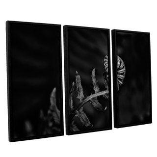 Tom Croce's 'Fern' 3 Piece Floater Framed Canvas Set