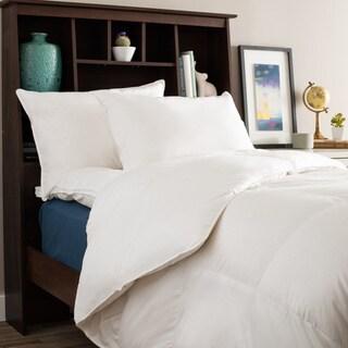 University Dorm Room Ready Twin XL Collegiate Luxury Bedding Package