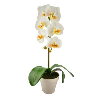 Red Vanilla Silk/Ceramic 22-inch x 5.5-inch Artificial Phalaenopsis With Flower Vase