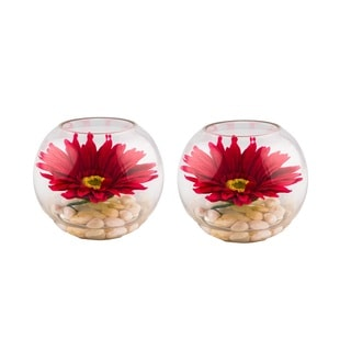 Red Gerbera in 3-inch x 4.5-inch Glass Bowl (Set of 2)