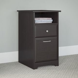 Copper Grove Daintree Espresso Oak 2-drawer File Cabinet