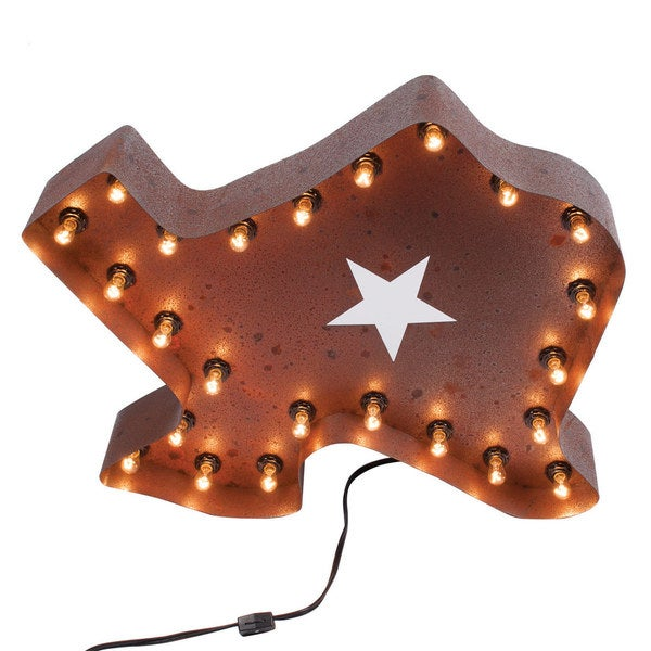 Joseph Allen Vintage Texas Marquee Light
