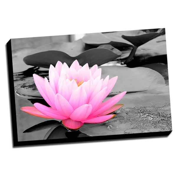 Pink Lotus Color Splash Printed Framed Canvas