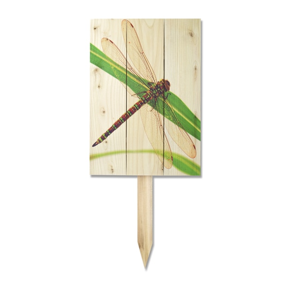 Wile E Dragonfly Yard Marker