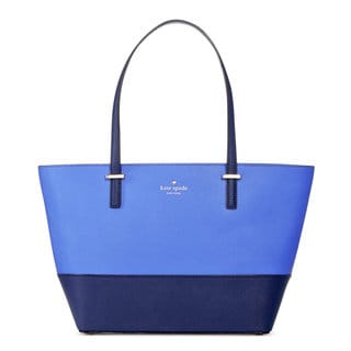 Kate Spade New York Women's Harmony Ocean Blue/Adventure Blue Small Tote Bag