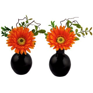 Red Vanilla 6.75-inch x 5-inch Gerbera Flower Arrangements in Black Glass Base