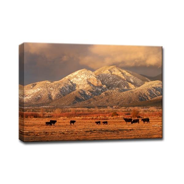 Ready2HangArt 'El Salto Cattle' by Bartlett Hayes