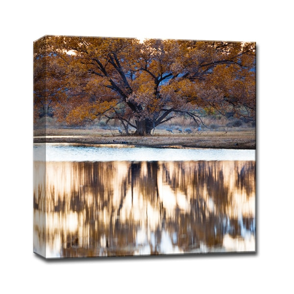 Ready2HangArt 'Bosque Lake' by Bartlett Hayes