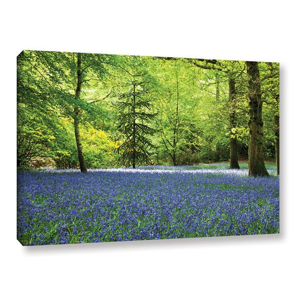 Ken Skehan's 'Laura's 'Bluebell Wood' Gallery Wrapped Canvas