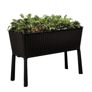 Keter Easy Grow Patio Flower Plant Planter Raised Elevated Garden Bed