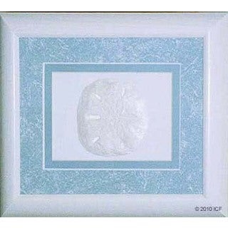 Cast Paper 'Sand Dollar' 10x12 Indoor/ Outdoor Framed Art