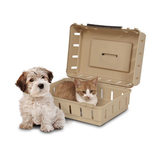 Petmate Cabin Kennel & Portable Pet Carrier