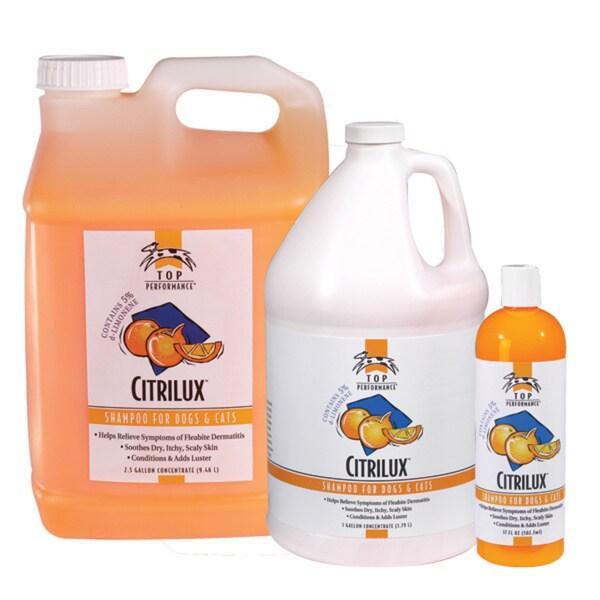 Top Performance Citrilux Shampoo