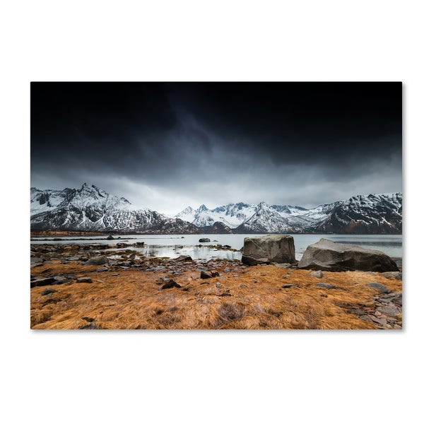 Philippe Sainte-Laudy 'Back to Earth' Canvas Art