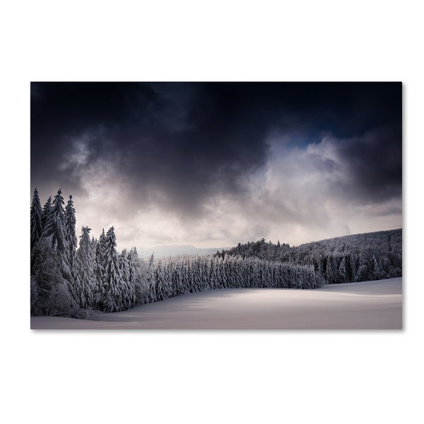Philippe Sainte-Laudy 'Blowin' In The Wind' Canvas Art