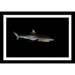 Craig Dietrich 'Fiercely Striking 2' Framed Plexiglass Underwater Photography