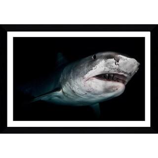 Craig Dietrich 'Ugly Beautiful' Framed Plexiglass Underwater Photography