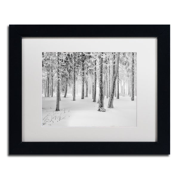 Philippe Sainte-Laudy 'Frozen World' Matted Framed Art